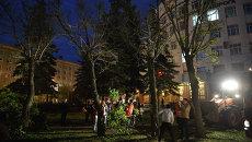 Вырубка елей в центре Новосибирска