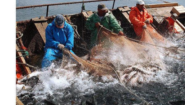 Письмо рыбаков - ответ серого бизнеса на попытки его легализации