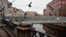 Голубы взлетают над каналом Грибоедова в Петербурге. Архивное фото.