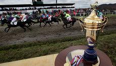 Скачки на Кубок губернатора Приморья