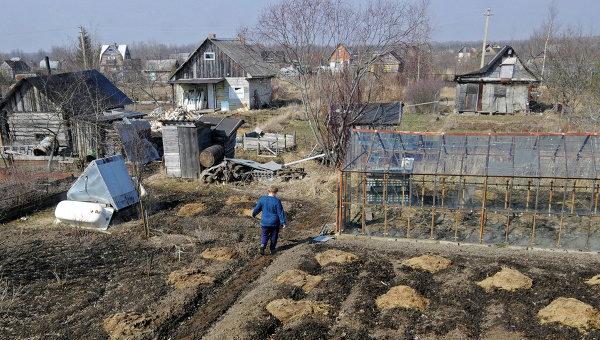 Садово-огородный участок. Архивное фото