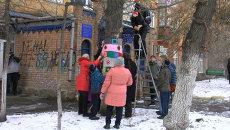 Спицы и клубок шерсти: свитер для тополя связали в Красноярске