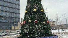 Первая новогодняя елка Владивостока украсила дорогу к Золотому мосту, архивное фото