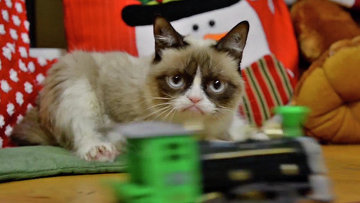Кадр из клипа Трудно быть котом на рождество