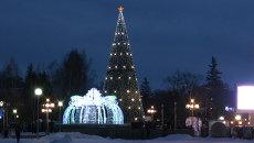 Золотые звезды, танцы и улыбки: томичи зажгли главную новогоднюю елку