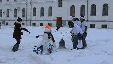 Панда, нефтяник и кот: кого вылепили из снега томские студенты