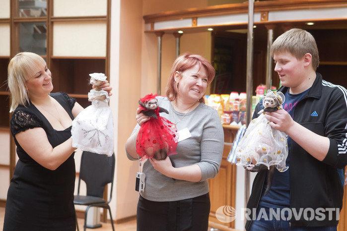 Выставка декоративный животных Маленький да удаленький в Томске