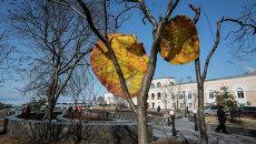 33+1 и агентство ДА! во Владивостоке устанавливают арт-объекты к Масленице