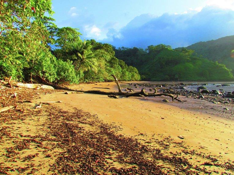 Кокосовый остров у побережья Коста-Рики