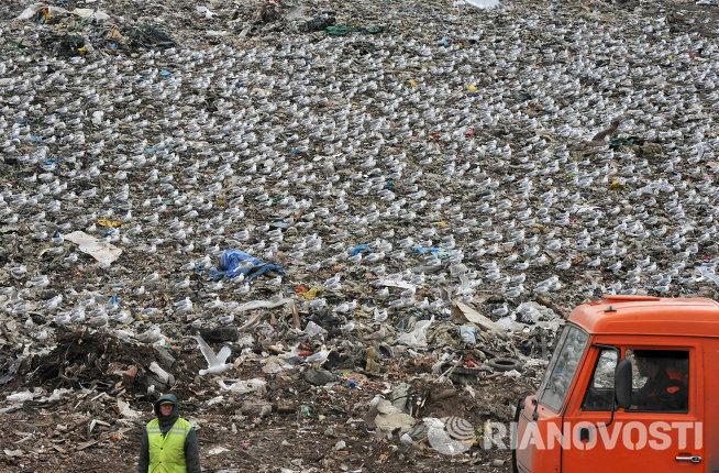 Свалка бытовых отходов