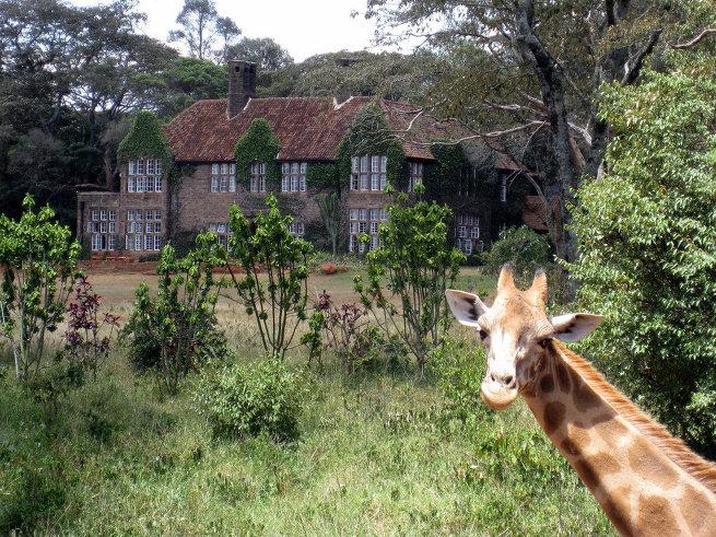 Поместье жирафов в Кении