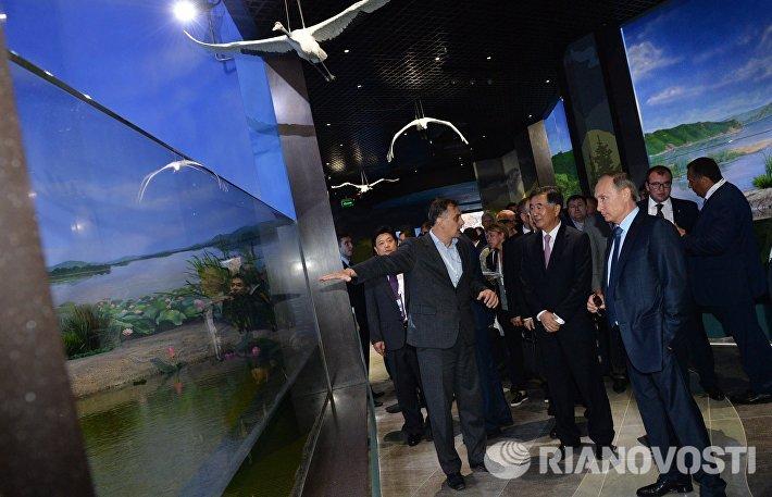 Президент РФ В.Путин посетил океанариум на о.Русский