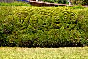 Фигурный куст в парке Франциско Альварадо