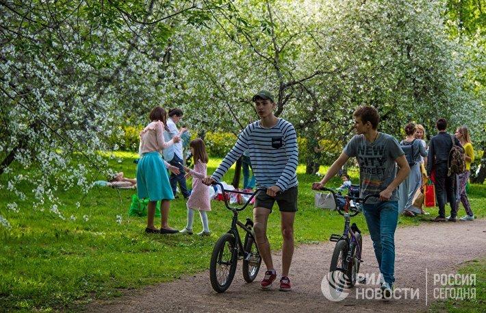 В Москве началось цветение яблонь