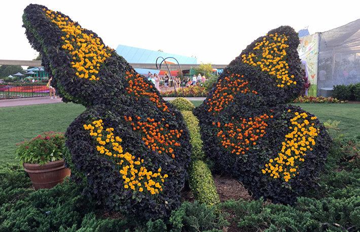 Куст с формами: как украсить сад топиариями